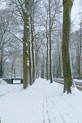 Hilverbeek Leeuwenlaan, 's-Graveland, Wijdemeren, Noord Holland, Netherlands