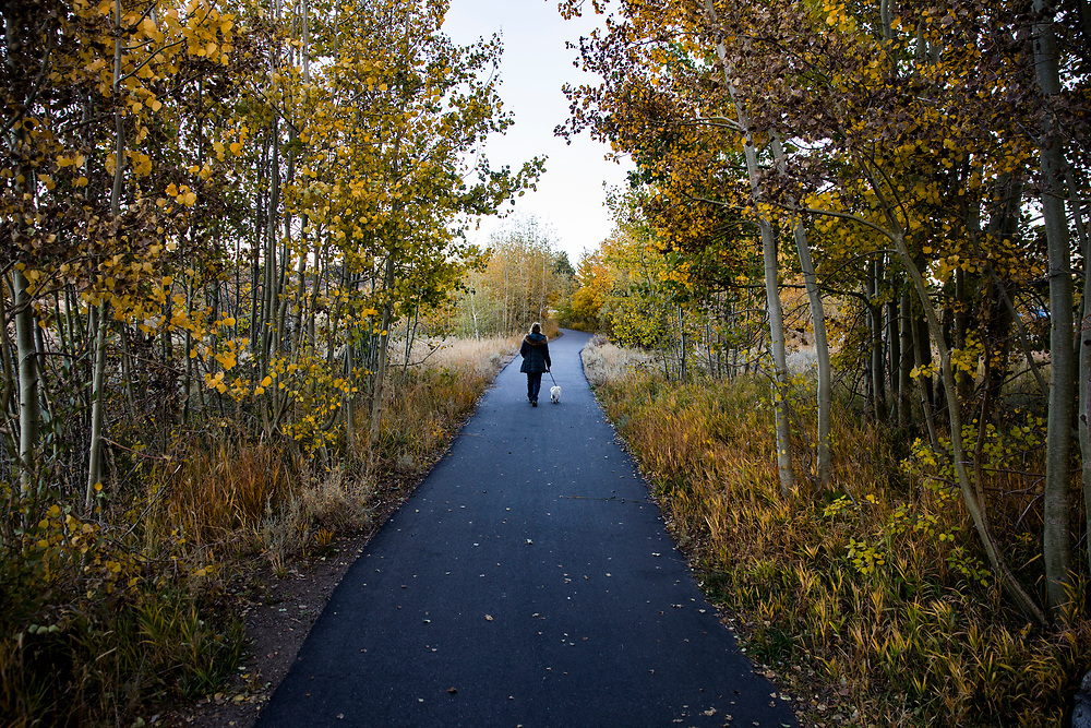 The Fall season in the Eastern Sierras is one of the most beautiful seasons to visit. The Mammoth Lakes Town Loop path weaves through colorful trees in October.