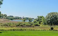 Georgica Pond, 3 Cove Hollow Farm Rd, East Hampton, NY