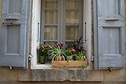 Window box with plants and flowers in the medieval village of Lagrasse, Languedoc-Roussillon, France. Lagrasse is known as one of the most beautiful French villages. It lies in the valley of the River Orbieu and is famous for its stone bridge and The Abbey of St. Mary of Lagrasse, Abbaye Sainte-Marie de Lagrasse, a Romanesque Benedictine abbey.