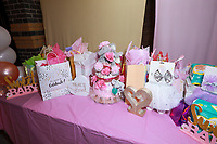 Ray and Lizet's Baby Shower held at  on November 14, 2020 in Colton, California, United States (Photo by Jc Olivera/VipEventPhotography.com)