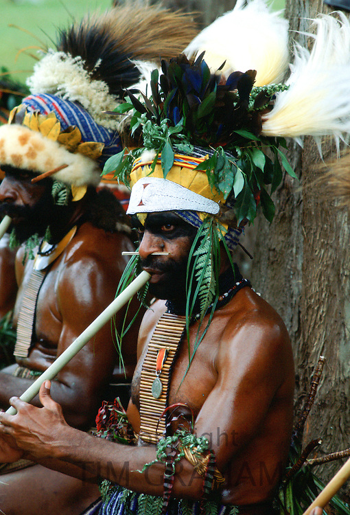 A tribesman wearing a large leaf and feather headdress playing a pipe during a meeting of tribes at Mount Hagen, Papua New Guinea, Australasia.