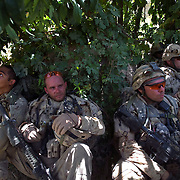 Canadian soldiers of the Royal Canadian Regiment (RCR) take a break from the searing heat under a tree eating grapes in a grapefield during an operation searching for Taliban insurgents and IED's in the Sperwan area of Panjwa'i District, Kandahar Province, Afghanistan..(Credit Image: © Louie Palu/The Alexia Foundation/ZUMA Press).June 29, 2010