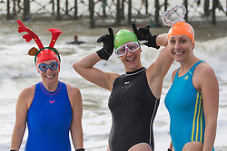 © Licensed to London News Pictures. 24/12/2016. Brighton, UK. Members of the Brighton Swimming Club brave the cold water and powerful waves for an extra long swim. Photo credit: Hugo Michiels/LNP