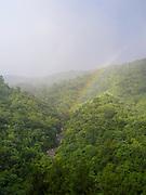 Rio Sabana and El Yunque National Forest, looking north, Puerto RIco.