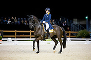 Carlijn Huberts - Watoeshi<br /> The Dutch Masters - Indoor Brabant 2019<br /> © DigiShots