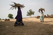 Kakahaijja, 18, left, and Aisha B, 15, right, head back to the IDP camp they stayed after fetching the firewood in the bush in Maiduguri, Nigeria, April 23, 2019. Kakahaijja was persuaded by her brother who joined Boko Haram to marry a fighter, and left home in Konduga Local Government with him and his friend in 2015. She was raped by a fighter upon arrival, then brought to another man to marry. She spent two years in the forest before being rescued by the Nigerian Army. Aisha B was abducted by her older brother who joined Boko Haram in 2015 in Banki District, and spent three and half years in Sambisa Forest. At the age of 13, she was forced to marry a 45-year-old commander who already had three wives and three girlfriends. She was rescued by the Nigerian Army that attacked their enclave.