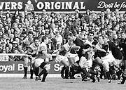 Twickenham, Great Britain,   Harlequins vs London Wasps, The Stoop Stadium, Twickenham, ENGLAND. Saturday 14/03/2015. Lawrence DALLAGLIO,<br /> [Mandatory Credit; Peter Spurrier/Intersport-images]