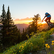 Andrew Whiteford grabs a little air on his mountain bike at sunset in the Tetons of Idaho. Mail Cabin Trail.