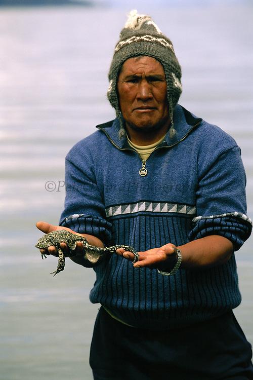 Giant Titicaca Frog (Largest aquatic frog in the World)<br />Telmatobius culeus<br />Lake Titicaca.  BOLIVIA & PERU  South America<br />Ramon Catari research assistant