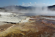 Steam rising from the hot springs at Mammoth Hot Springs, Yellowstone National Park, Wyoming, USA