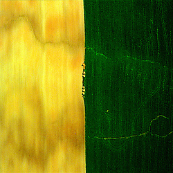 Aerial view of Amish Farm in Lancaster,