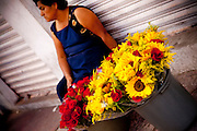 Selling Flowers in Puebla