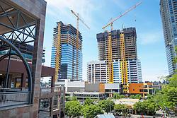 United States, Washington, Bellevue. New construction in downtown Bellevue.