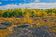 Reclaimed landscape. Kelly Lake Road.<br />Greater Sudbury<br />Ontario<br />Canada