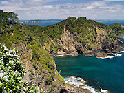 Looking W from atop Motuarohia Island. Bay of Islands, Northland, New Zealand.