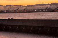 Breakwater @ South Beach Harbor w/ Oakland Skyline in background