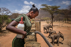 Rescued elephants at Reteti Elephant Sanctuary are looked after by local keepers from the Samburu, part of the Namunyak Community Conservancy in Northern Kenya, Reteti is the first-ever community-owned and -run elephant orphanage in Africa. Their goal is to rescue, rehabilitate and reintroduce orphaned or abandoned elephant calfs into the wild. (Photo by Ami Vitale)
