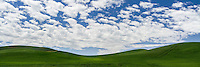 Rolling hills of green go on for miles in the Palouse region of Southeastern Washington as fluffy clouds fill the skies.
