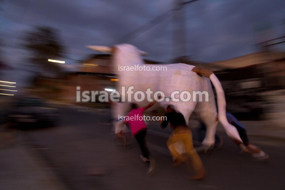 Jovenes que peraran un toro para ser quemado el 8 de marzo, lo trasladan por las calles de Tultepec.