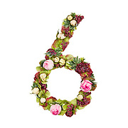 The number six Part of a set of letters, Numbers and symbols of the Alphabet made with flowers, branches and leaves on white background