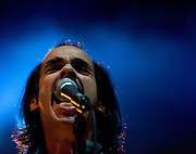 Nick Cave's side project Grinderman at Electric Picnic 2008. Electric Picnic 2008, Stradbally, Laois, Ireland. Grinderman have a more raw, garage band sound than the Bads seeds, of which Nick Cave, Warren Ellis, Martyn P. Casey, and Jim Sclavunos are all members..