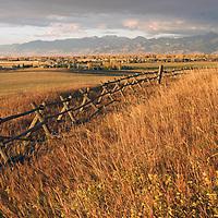 A jack-leg fence borders a wheat field near Bozeman Montana (background)