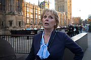 Anna Soubry MP outside the Houses of Parliament after being welcomed by anti Brexit Remain supporters the day after she was barracked by protesters calling her a nazi, on 8th January 2019 in London, England, United Kingdom. Remainers sang for shes a jolly good fellow as she walked past. Anna Mary Soubry is a British Conservative Party politician, barrister and journalist. She has been the Member of Parliament for Broxtowe since 2010.