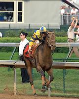 Street Sense with Calvin Borel win the 133rd Kentucky Derby
