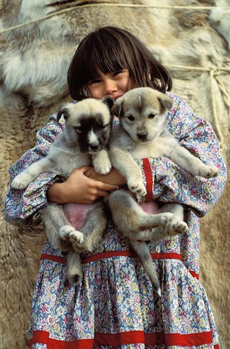 Young Iñupiaq girl in traditional summer kuspuk with husky puppies, Kotzebue, Alaska