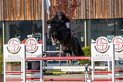 Bellemans Marc, BEL, Orak D'hamwyck<br /> Belgian Championship 6 years old horses<br /> SenTower Park - Opglabbeek 2020<br /> © Hippo Foto - Dirk Caremans<br />  13/09/2020