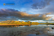 Steamboat Mountain and Haystack Butte reflect into wetlands pond along the Rocky Mountain Front near Augusta, Montana, USA