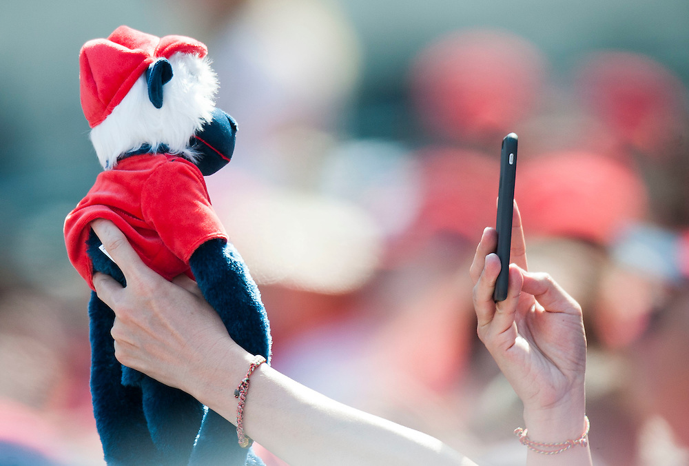 A Rally Monkey gets a closeup during the Angels' preseason game against the Chicago Cubs at Angel Stadium Sunday.<br /> <br /> <br /> ///ADDITIONAL INFO:   <br /> <br /> angels.0404.kjs  ---  Photo by KEVIN SULLIVAN / Orange County Register  --  4/3/16<br /> <br /> The Los Angeles Angels take on the Chicago Cubs at Angel Stadium during a preseason game at Angel Stadium Sunday.<br /> <br /> <br />  4/3/16