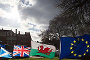 As Prime Minister Theresa May negotiates further Britains exit from the European Union in Brussels, the EU flag and that of the Welsh, the Union Jack and the Scottish Saltair fly in a stiff breeze on College Green, as part of an anti-Brexit protest opposite the Houses of Parliament, on 7th February 2019, in Westminster, London England.