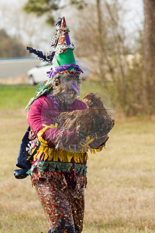 Traditional Cajun Mardi Gras costumed revelers catch a live chicken during the Courir de Mardi Gras chicken run on Fat Tuesday February 17, 2015 in Eunice, Louisiana. Cajun Mardi Gras involves costumed revelers competing to catch a live chicken as they move from house to house throughout the rural community.