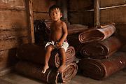 Balata slabs and child<br /> 500kg of balata,<br /> Rupununi,<br /> Guayana,<br /> South America
