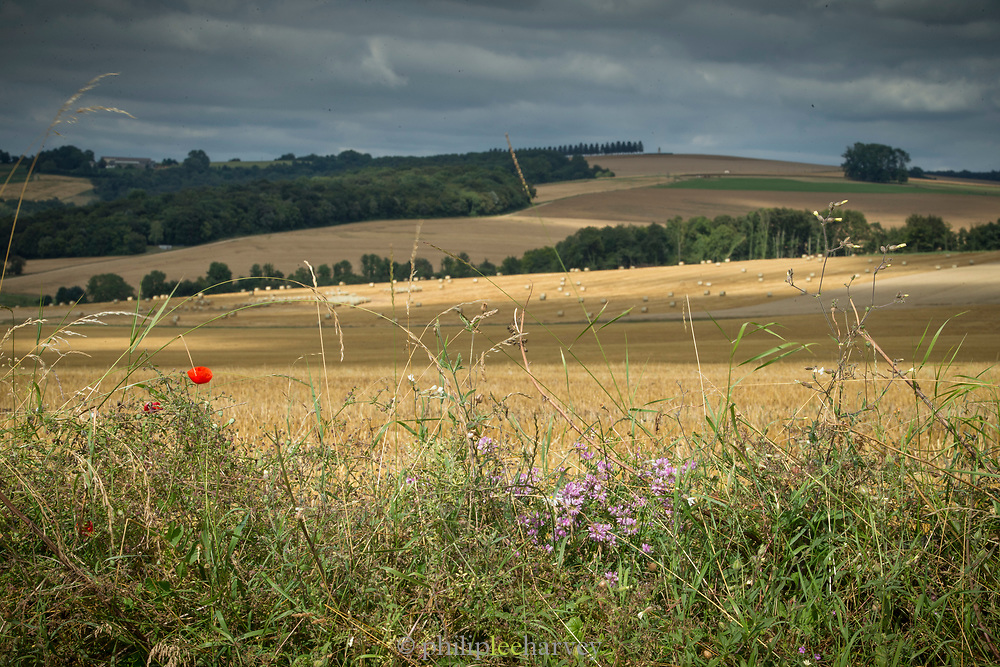 View of hills and agricultural fields under overcast sky, Romagne-sous-Montfaucon, France