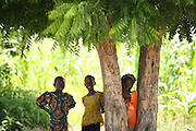 Chadian refugee girls stand under a tree in the Langui refugee camp outside the town of Garoua, Cameroon on Thursday September 17, 2009.