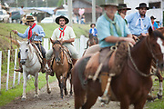 Brazilian Gauchos cowboys males, on their horses lining up preparing to compete in a Rodeo. Gaucho cowboy Rodeo, Flores de Cunha, Rio Grande do Sul.