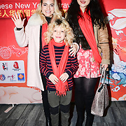 Diana Arama is a Managing Director - Mayfair Networking Events with Sasha and Sunny Ye attend the 2020 China-Britain Chinese New Year Extravaganza with 200 performers from over 20 art groups from both China and the UK showcase at Logan Hall on 18th January 2020, London, UK.