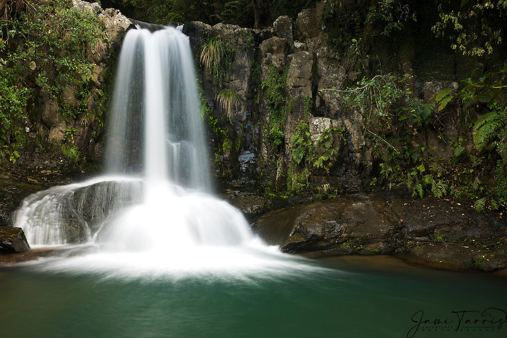 One of many waterfalls in Te Urewara National Park, North Island, New Zealand