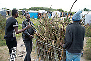 The Jungle, Centre for migrants Calais. Sudanese refugees collect firewood to make fires for cooking and keeping warm at night.
