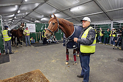 Jerich Parzival of Adelinde Cornelissen with Dutch team vet Jan Greve<br /> Alltech FEI World Equestrian Games - Kentucky 2010<br /> © Dirk Caremans