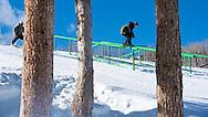 Tom Wallisch duing Ski Slopestyle Practice during 2015 X Games Aspen at Buttermilk Mountain in Aspen, CO. ©Brett Wilhelm/ESPN