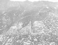 1958 Looking north at flower fields on Los Feliz Blvd., just east of Griffith Park's Ferndell.