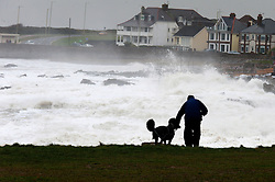 © Licensed to London News Pictures. 03/02/2017. Porthcawl, Mid Glamorgan, Wales, UK. A man walks a large poodle on the headland as huge waves hit the South Wales resort of Porthcawl in Mid Glamorgan, Wales, UK. Photo credit: Graham M. Lawrence/LNP