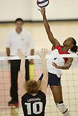FAU Volleyball 2006