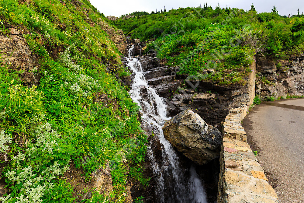 Landscape photography from the Going-to-the-Sun road through Logan Pass in Glacier National Park<br /> <br /> ©2016, Sean Phillips<br /> http://www.RiverwoodPhotography.com