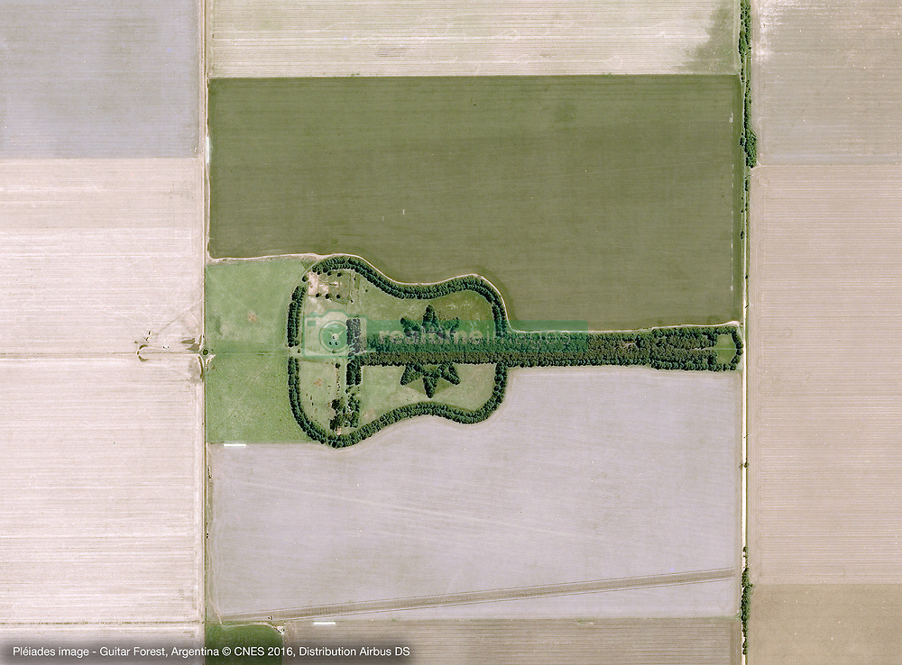 Feb 11, 2016 - Argentina - Pleiades image of Guitar Forest Argentina. Pedro Martin Ureta created a piece of land art so that it could be viewed from an airplane. It turns out that it is visible from space, too. In the fertile lowland plains of Argentina (the Pampas), a guitar-shaped forest grows amidst the farmland. The project was started in 1979 by Ureta on his farm near the town of Laboulaye, and it has become a wonder for pilots and passengers flying over the region. Together with his children, Ureta created the forest in a tribute to his wife, Graciela, who died during childbirth in 1977. News reports claim that Ureta has never seen his creation from the air, except for photos from friends. (Credit Image: © Airbus DS/Airbus DS via ZUMA Wire/ZUMAPRESS.com)