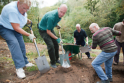 Ranger and volunteers at Bestwood Country Park, Nottingham, part of Sherwood Forest, working on conservation project; they are digging out heather scrapes where the topsoil is removed and heather planted in order to produce heathland, a different habitat typical of the original forest. Removing the topsoil enables the heather to compete better against other plants species.
